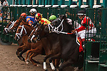 March 29, 2014:The start of the Rampart(G3) on Florida Derby day at Gulfstream Park in Hallandale Beach (FL). Arron Haggart/ESW/CSM
