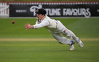 Michael Bracewell tries to take a catch during day three of the Plunket Shield match between the Wellington Firebirds and Auckland Aces at the Basin Reserve in Wellington, New Zealand on Monday, 16 November 2020. Photo: Dave Lintott / lintottphoto.co.nz