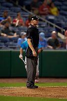 Umpire Justin Whiddon during a Florida State League game between the Charlotte Stone Crabs and Clearwater Beach Dogs on July 26, 2019 at Spectrum Field in Clearwater, Florida.  Clearwater defeated Charlotte 6-5.  (Mike Janes/Four Seam Images)