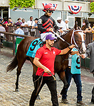 JULY 10, 2021: Hidden Enemy (IRE) post parade in the Gr.1 Belmont Derby Invitational Stakes, going 1 1/4 mile on the turf, at Belmont Park in Elmont, New York. Sue Kawczynski/Eclipse Sportswire/CSM