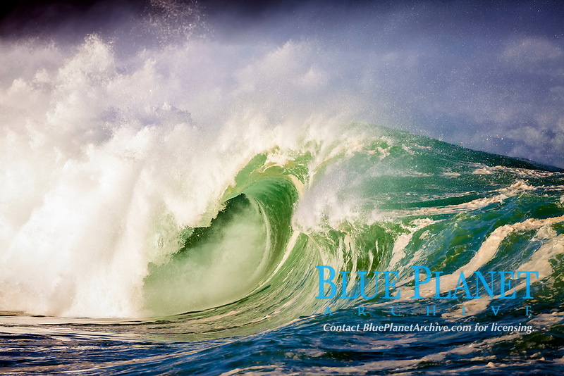 huge ocean wave violently breaking at shore, creating wall of water, shore break, Waimea Bay, Oahu, Hawaii, USA, Pacific Ocean