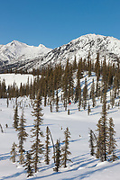Cross country skiing in the Brooks Range mountains, Arctic, Alaska.