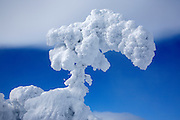 Appalachian Trail - The summit of Carter Dome in winter conditions. Located in the White Mountains, New Hampshire USA