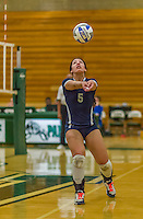 1 November 2015: Saint Joseph College Lady Bear and Setter Anna Carbone, a Senior from Ozone Park, NY, bumps against the Yeshiva University Maccabees at SUNY Old Westbury in Old Westbury, NY. The Bears shut out the Maccabees 3-0 in NCAA women's volleyball, Skyline Conference play. Mandatory Credit: Ed Wolfstein Photo *** RAW (NEF) Image File Available ***