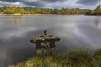 Europe/France/Centre/41/Loir-et-Cher/Sologne/Chambord: Parc de Chambord - Etang du Périou  // France, Loir et Cher, Loire Valley listed as World Heritage by UNESCO, Chateau de Chambord : Périou Pond in the park