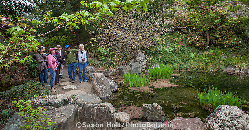 Allan Mandell, garden photographer leading PhotoBotanic workshop, University of California Berkeley Botanical Garden