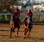 November 4, 2020: Jasper Prince, trained by trainer Hideyuki Mori, exercises in preparation for the Breeders' Cup Sprint and Pingxiang, trained by trainer Hideyuki Mori, exercise in preparation for the Breeders' Cup Sprint at Keeneland Racetrack in Lexington, Kentucky on November 4, 2020. Scott Serio/Eclipse Sportswire/Breeders Cup