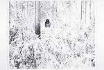sad woman standing in snowy landscape