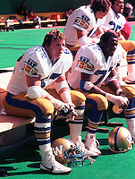 Richard Nemeth, Winnipeg Blue Bombers 1984. Photo F. Scott Grant