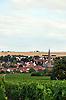 Blick über Weinberge auf Nieder-Saulheim und Felder im Hintergrund