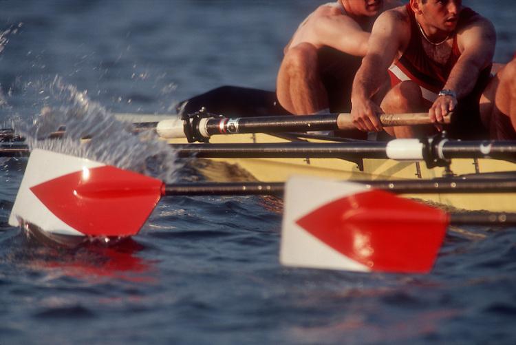 Rowing, oar blades, Harvard varsity men's eight at the catch, Charles River, Cambridge, Massachusetts