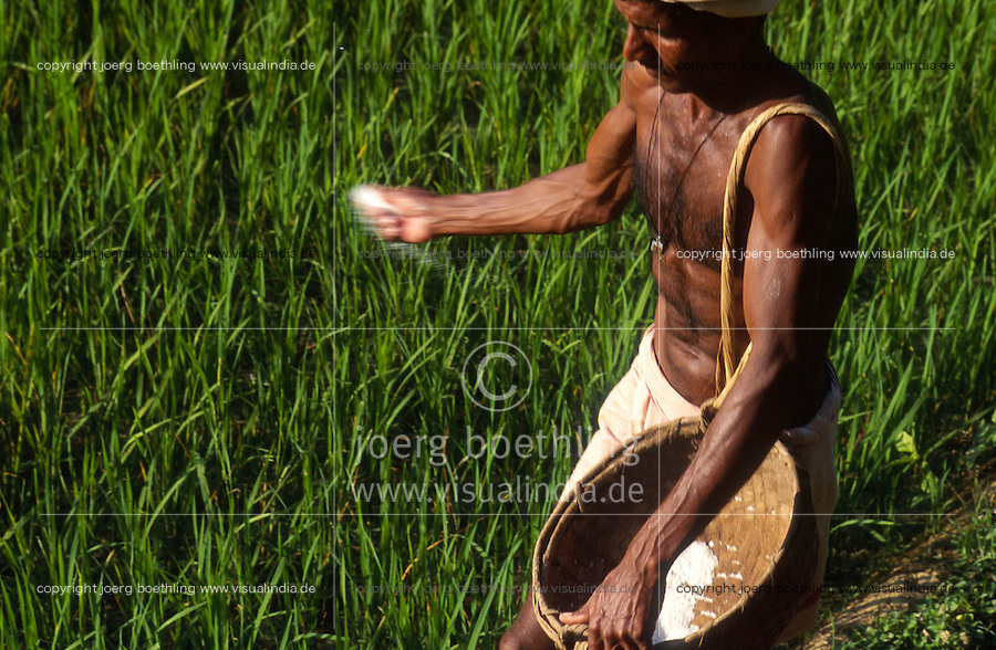 INDIA Karnataka, farmer apply synthetic fertilizer in rice paddy field / INDIEN Karnataka, Taccode, Farmer verstreut agrochemischen Duenger im Reisfeld