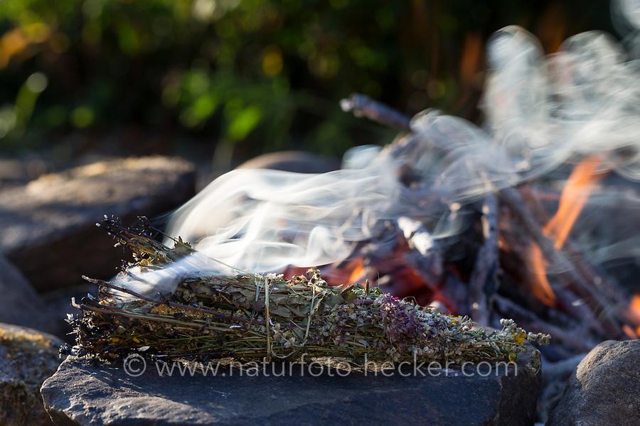 Räuchern am Lagerfeuer, Räucherbündel, Räucherbüschel, Räucherritual, Sommersonnenwende, Räuchern mit Kräutern, Kräuter verräuchern, Wildkräuter, Duftkräuter, Duft, Feuer, Outdoor, Feuerstelle, Campen. fire, Smoking with herbs, wild herbs, aromatic herbs, fumigate, cure, bonfire, campfire, camping. Oregano, Wilder Dost, Echter Dost, Oreganum, Gemeiner Dost, Origanum vulgare, Oregano, Wild Marjoram. Tüpfel-Johanniskraut, Echtes Johanniskraut, Tüpfeljohanniskraut, Hypericum perforatum, St. John´s Wort. Gewöhnlicher Beifuß, Beifuss, Artemisia vulgaris, Mugwort, common wormwood. Rainfarn, Rain-Farn, Tanacetum vulgare, Chrysanthemum vulgare, Tansy. Walnussblätter, Walnuß, Walnuss, Walnuß, Wal-Nuss, Wal-Nuß, Juglans regia, Walnut, Noyer commun