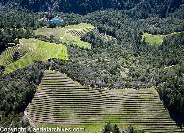aerial photograph mountain vineyard Napa Valley, California