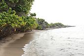Narrow Beach of Sand