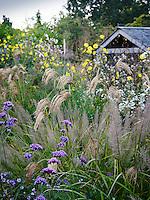 Dove Cottage Garden & Nursery