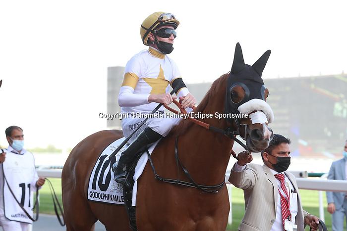 March 27, 2021: RODAINI #10 in the post parade for the Godolphin Mile on Dubai World Cup Day, Meydan Racecourse, Dubai, UAE. Shamela Hanley/Eclipse Sportswire/CSM