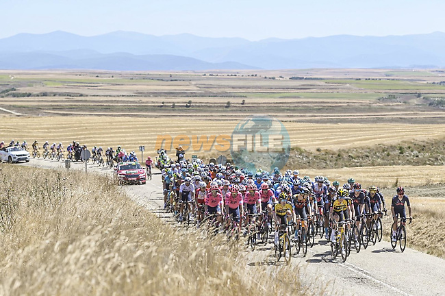 The peloton during Stage 3 of La Vuelta d'Espana 2021, running 202.8km from Santo Domingo de Silos to Picon Blanco, Spain. 16th August 2021.    <br /> Picture: Unipublic/Charly Lopez   Cyclefile<br /> <br /> All photos usage must carry mandatory copyright credit (© Cyclefile   Unipublic/Charly Lopez)