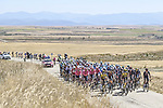 The peloton during Stage 3 of La Vuelta d'Espana 2021, running 202.8km from Santo Domingo de Silos to Picon Blanco, Spain. 16th August 2021.    <br /> Picture: Unipublic/Charly Lopez | Cyclefile<br /> <br /> All photos usage must carry mandatory copyright credit (© Cyclefile | Unipublic/Charly Lopez)