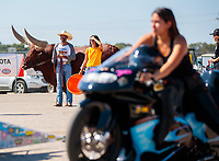 Oct 20, 2019; Ennis, TX, USA; NHRA pro stock motorcycle rider Jianna Salinas rides past a bull in the staging lanes during the Fall Nationals at the Texas Motorplex. Mandatory Credit: Mark J. Rebilas-USA TODAY Sports
