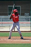 Mariel Bautista - Cincinnati Reds 2018 extended spring training (Bill Mitchell)