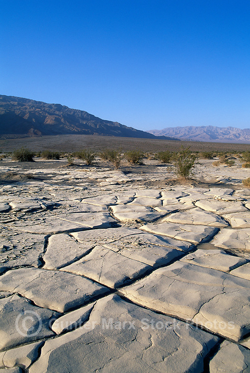 Death Valley National Park, California, CA, USA - Dry Cracked Mud