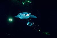 videographer and reef manta ray, Mobula alfredi, feeding on plankton attracted by the lights of a dive boat, the Kona Agressor II, Kona, Big Island, Hawaii, Pacific Ocean