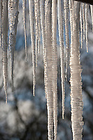 Eiszapfen, Eis-Zapfen, icicle