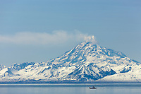 Marine vessel travels through Cook Inlet with Mt. Redoubt, of the Chigmit mountains, Aleutian range, venting gas and vapor, in the distance.