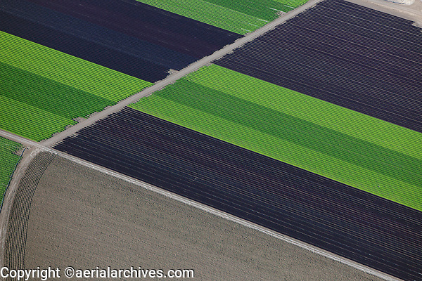 aerial photograph of farm fields in the Salinas Valley, Monterey County, California in spring