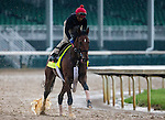 APRIL 28, 2014: Wicked Strong, trained by Jimmy Jerkens, exercises in preparation for the Kentucky Derby at Churchill Downs in Louisville, KY. Jon Durr/ESW/CSM