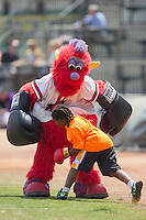 """Winston-Salem Dash mascot """"Bolt"""" boxes with a young fan between innings of the game against the Myrtle Beach Pelicans at BB&T Ballpark on May 7, 2014 in Winston-Salem, North Carolina.  The Pelicans defeated the Dash 5-4 in 11 innings.  (Brian Westerholt/Four Seam Images)"""