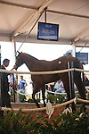 #67Hip #67, a bay colt, sired by Lion Heart, foaled in Florida and consigned by Eddie Woods, during the Fasig-Tipton Florida Sale at the Palm Meadows Training Center in Boynton Beach, Florida on March 26, 2012. The final sale price was $625,000. Arron Haggart/Eclipse Sportswire.