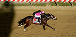 May 14, 2021: Last Judgement, #11, ridden by jockeyJose Ortiz, wins the Pimlico Special Match Series Stakes on Black-Eyed Susan Day at Pimlico Race Course in Baltimore, Maryland. John Voorhees/Eclipse Sportswire/CSM