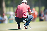 Justin Rose of England ponders his next shot during Hong Kong Open golf tournament at the Fanling golf course on 23 October 2015 in Hong Kong, China. Photo by Xaume Olleros / Power Sport Images