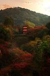 Beautiful autumn scenery of Kiyomizu-dera temple Koyasu pagoda, dedicated to Koyasu Kannon, a goddess of childbirth. Higashiyama, Kyoto, Japan 2017. Image © MaximImages, License at https://www.maximimages.com