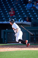 Oregon State Beavers Cole Hamilton (14) at bat during an NCAA game against the New Mexico Lobos at Surprise Stadium on February 14, 2020 in Surprise, Arizona. (Zachary Lucy / Four Seam Images)