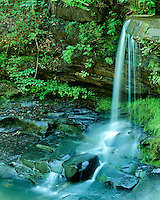 Waterfall along the New River; New River Gorge National River, WV