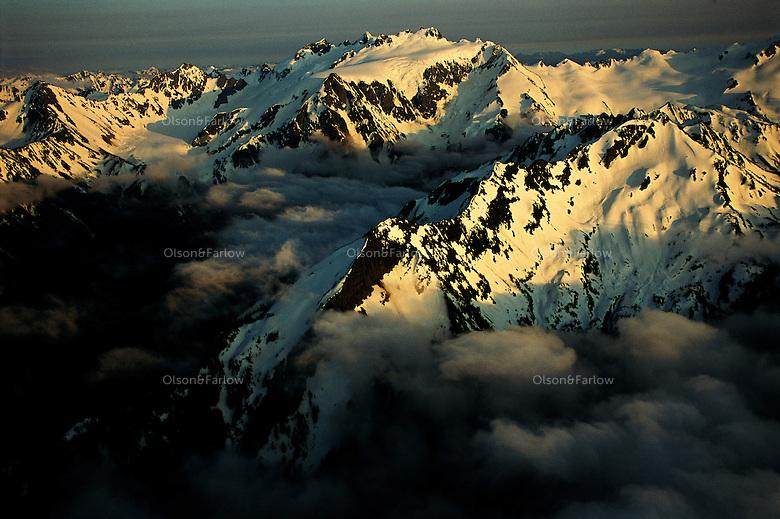 Rising nearly 8,000 feet, Mount Olympus, top center, and its sister peaks in Olympic National Park govern weather. When sodden ocean air blows in, the mountains force it to high elevations where it cools, releasing moisture: more than 200 inches of precipitation--mostly snow--a year.<br />  <br /> The Olympics are some of the youngest mountains on earth- -thrust up from the sea only 35 million years ago. They are still rising. Seven glaciers formed around 2500 years ago that continue to shape Mt. Olympus. Olympic is one of the wildest places remaining in the contiguous U.S. and is protected by the Wilderness Act of 1964.