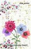 Isabella, FLOWERS, BLUMEN, FLORES, paintings+++++,ITKE029784,#f#, EVERYDAY