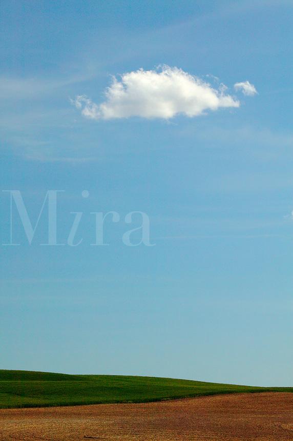 A single cloud over farmland (wheat fields) near Ritzville, Eastern Washington