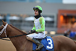 January 23, 2021: Jockey Joseph Rocco, Jr. after winning the Pippin Stakes at Oaklawn Racing Casino Resort in Hot Springs, Arkansas. ©Justin Manning/Eclipse Sportswire/CSM