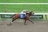 D'bigcat wins fifth race at Saratoga on Aug. 23, 2009