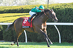 April 09, 2021: Raging Bull #8, ridden by Irad Ortiz Jr. draws away from the field to win the $300,000 Maker's Mark Mile (Grade 1) for trainer Chad Brown and owner Peter Brant at Keeneland Race Courrse in Lexington, Kentucky on April 09, 2021. Jessica Morgan/Eclipse Sportswire/CSM