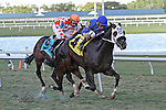 My Storm Trooper (KY) with jockey Jeffrey Sanchez on board breaks his maiden for 3  year olds at Gulfstream Park. Hallandale Beach, Florida  02-01-2014