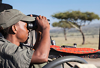 Tanzania.  Game Spotter Checking for Game on the Northern Serengeti Plain.