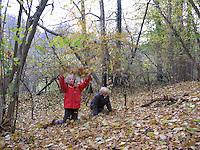 Kinder, Geschwister, Mädchen und Junge spielen im Herbst im Wald mit Laub, Blätter