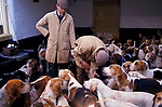 'DUKE OF BEAUFORT HUNT', REMOVING SPLINTERS FROM THE PAWS OF LAME HOUNDS & ADMINISTERING INJECTION