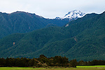 Forest covered mountain range, South Island, New Zealand