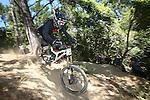 NELSON, NEW ZEALAND - January 28: Top Gun Mountain Bike Downhill race The Fringe  on January 28 2017 in Nelson, New Zealand. (Photo by: Evan Barnes Shuttersport Limited)